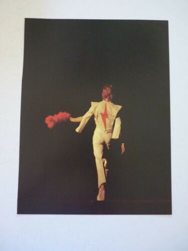 David Bowie Single Coffee Table Book Photo Page 8x11