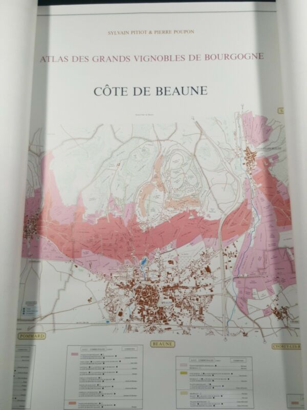 French Atlas Vineyards of Bourgogne Cote De Beaune Nuits Modern Pitiot/Poupon