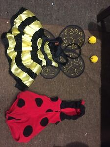 Bubble bee/lady bug costume