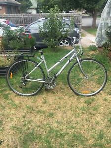 Ladies Bicycle Hybrid Giant - Cypress