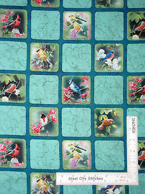 Wild Wings Heavens Breath Birds Blocks Cotton Fabric Springs CP40303 By The Yard