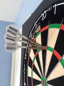 Chizzy darts 22g Gold and Pixel Target