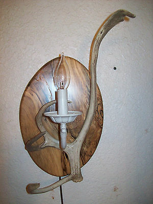 Antlers Reindeer (REINDEER (DEER) ANTLER/SHED/HORN WALL SCONCE LIGHT/LAMP/LIGHTS/LAMPS)