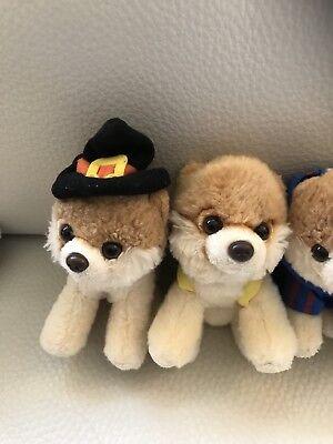 Gund Boo The World's Cutest Dog Plush Pomeranian Mini $9.99 Each Witch Halloween