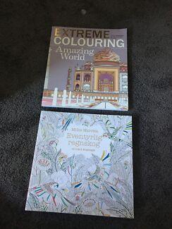 Colouring in books