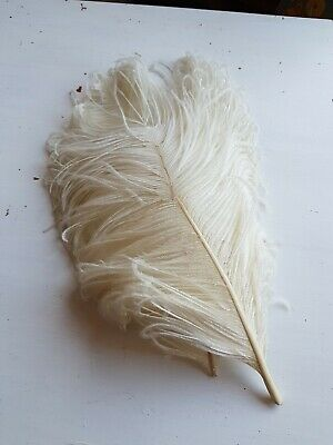 Vintage Ostrich 2 feather plume head dress hat millinary off-white trimming
