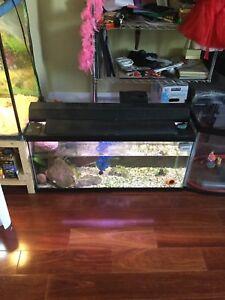 25 gallon fish tank