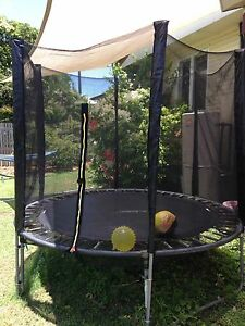 Trampoline In Cairns Region Qld Gumtree Australia Free