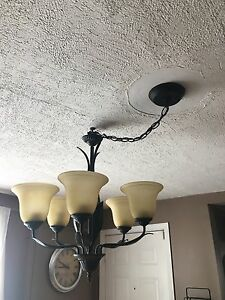 Frosted Shade Hanging Light