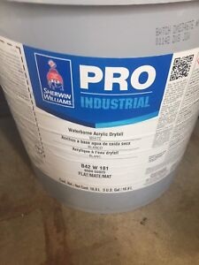 Brand new 5 gallon and gallon paints