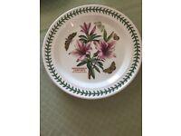 Poppy Portmeirion Botanic Garden 14 Count Coated Paper Luncheon Plates