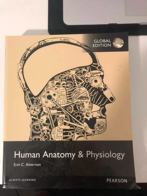 Human Anatomy & physiology Textbook Erin C Amerman | Textbooks ...