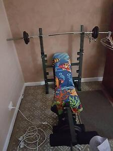 ''GYM SET FOR SALE - ADJUSTABLE BENCHPRESS WITH FOUR DUMBELLS'' Putney Ryde Area Preview