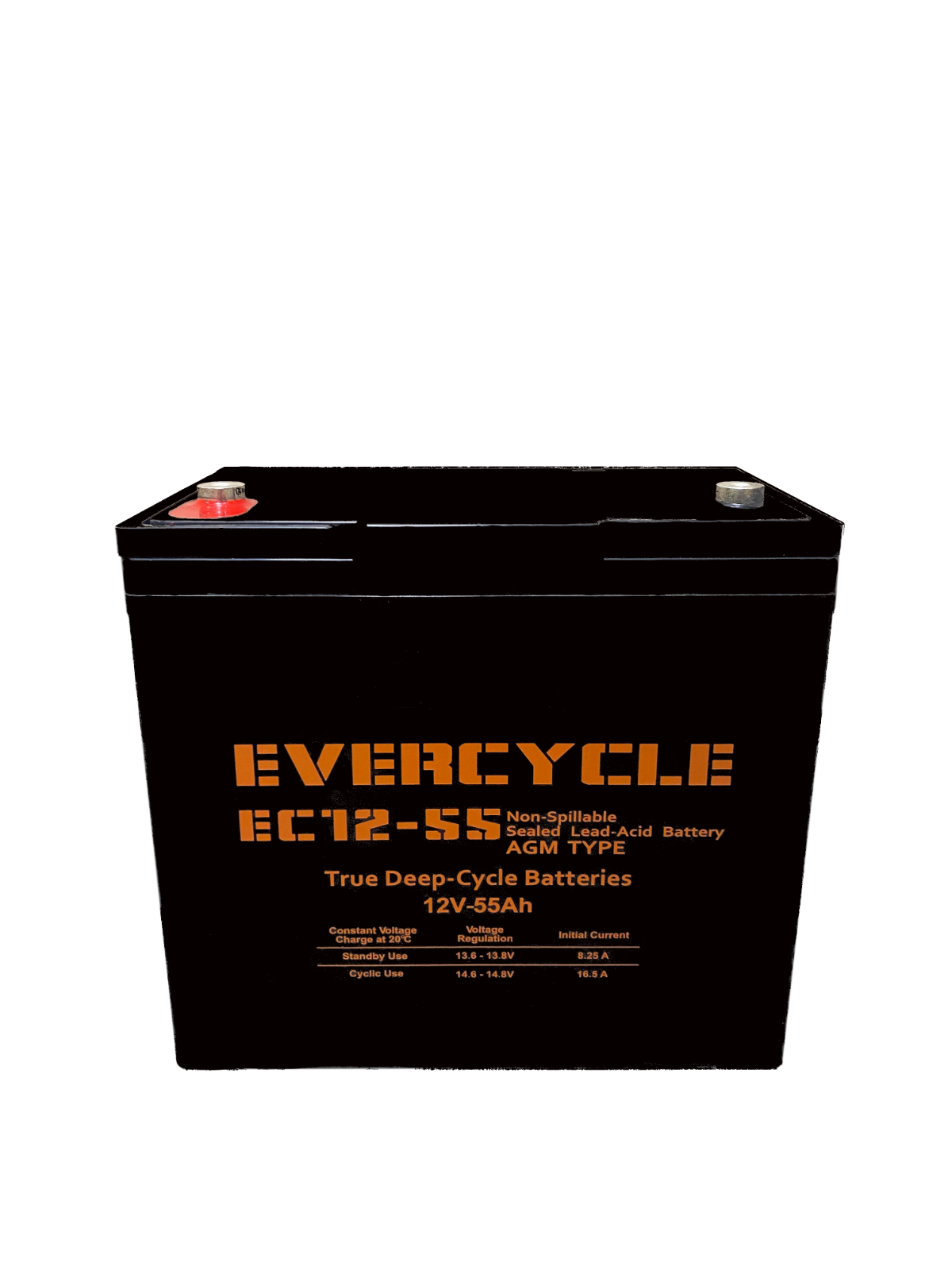 "Evercycle: 12V 200CCA Battery for ""Craftsman 25780 Lawn Trac"