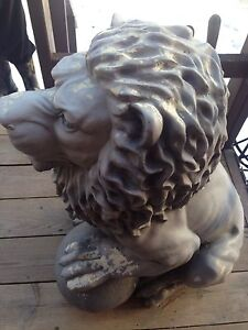 Outdoor Lion