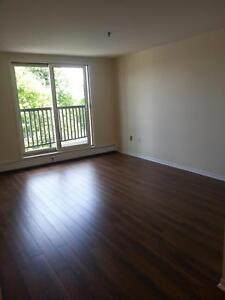CENTRAL HALIFAX'S BEST 1 BEDROOM AT 5511 CHARLES STREET JULY 1ST