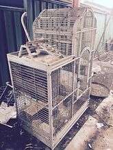 Solid Parrot Cage - suit tame bird Blackwood Mitcham Area Preview