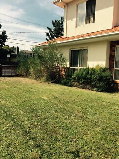 CHEAP N CLEAN MOWING AND GARDENING