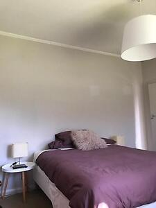 Fully furnished spacious room to rent Marion Marion Area Preview