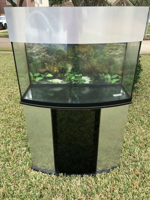 Curved Glass Aquarium On A Stand 40 Gal