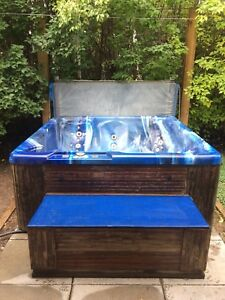 *reduced* Beachcomber hot tub