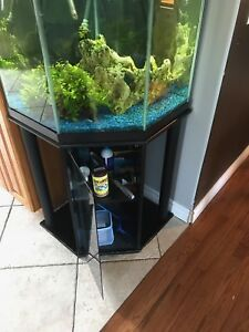 Fish Tank - 50 gallon - corner style