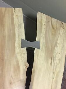 Live edge silver maple coffee table y-slab with stainless steel  Peterborough Peterborough Area image 2