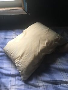 Water pillow for sale 50$OBO