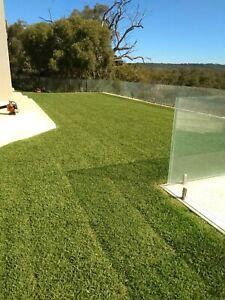 Mark trees gardening,lawn mowing handyman services