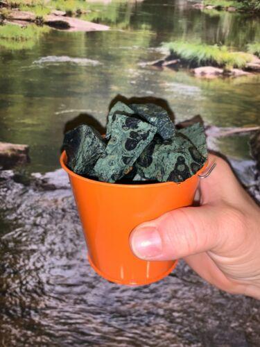 Bucket Full of Crocodile Jasper Rough + FREE gemstone - Pick Bucket Color