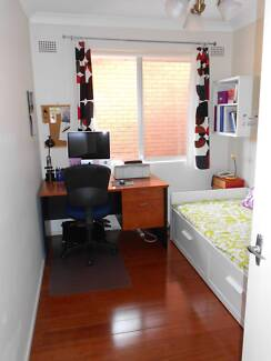 Room for rent in sun filled apartment