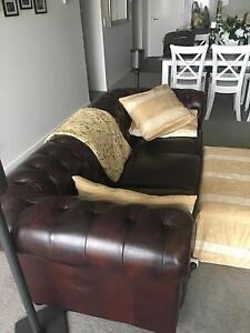 Blood ox chesterfield 3 Seater lounge Newstead Brisbane North East Preview