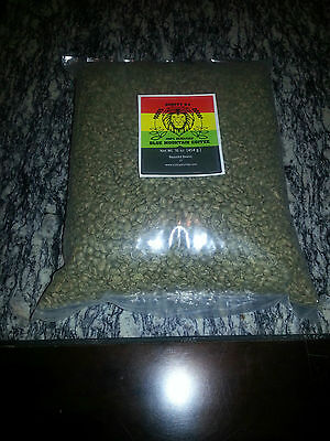 **Scotty D's - 10 pounds GREEN  Jamaican Dirty Mountain Coffee Beans**