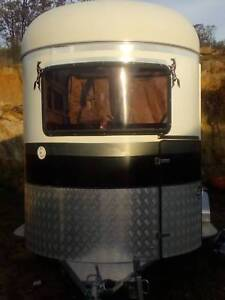 camper straight loader horse float livestock gumtree australia
