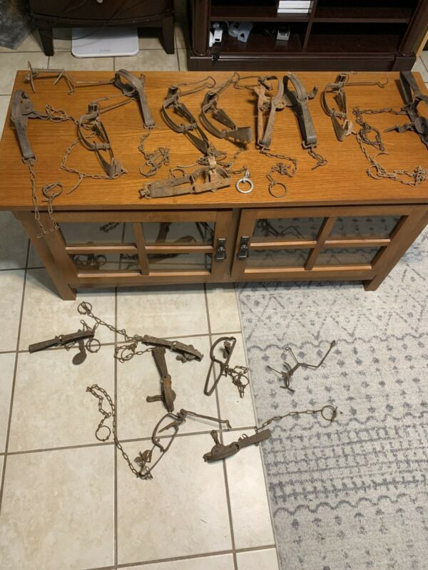 vintage animal leg hold traps lot 15 small game VICTOR + UNKNOWN Brand