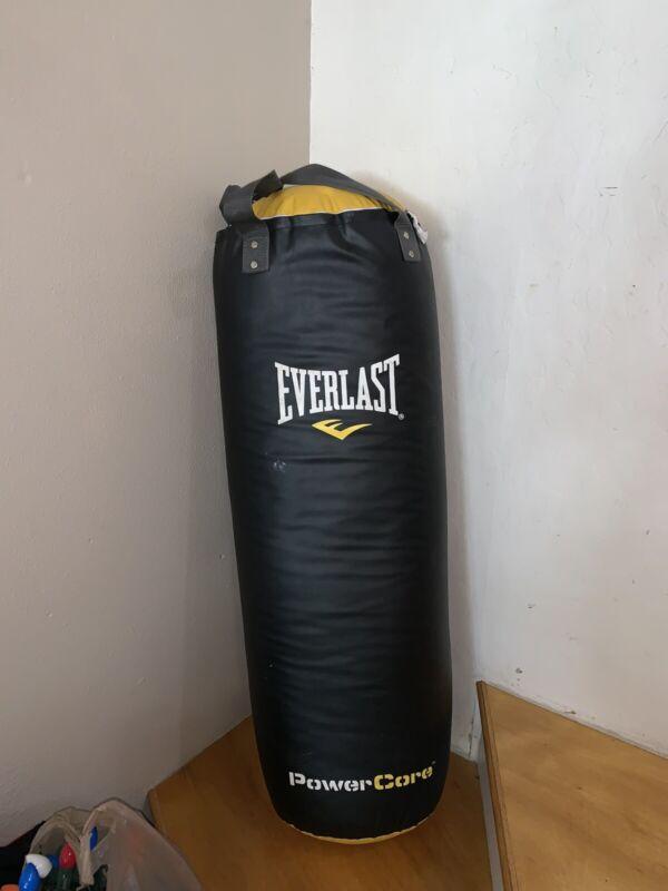 Everlast Powercore Punching bag