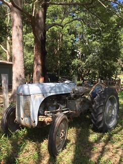 Massey Ferguson 1949 & 1950 TE20 $4000  Nimbin Lismore Area Preview