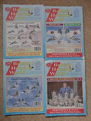 4x British Homing World racing pigeon birds magazines back issue February 2019