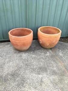 Large pots Argenton Lake Macquarie Area Preview