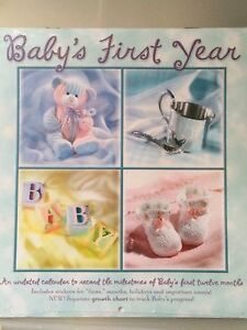 Baby's First Year Calendar