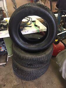 Snow Paw Winter Tires
