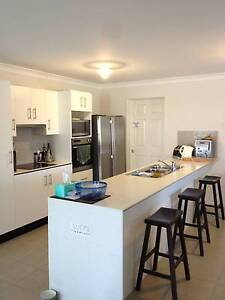 MASTER BEDROOM TO RENT IN A MODERN  HOUSE AT CAMP HILL Camp Hill Brisbane South East Preview