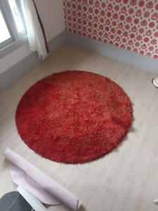 Red rug large shag pile
