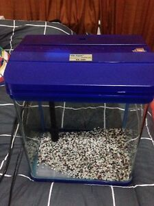 Free fish tank Mile End West Torrens Area Preview