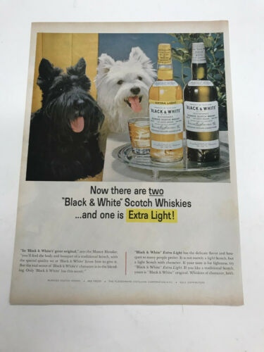Black and White Scotch Whiskey Dogs vintage  advertisement  Scotties