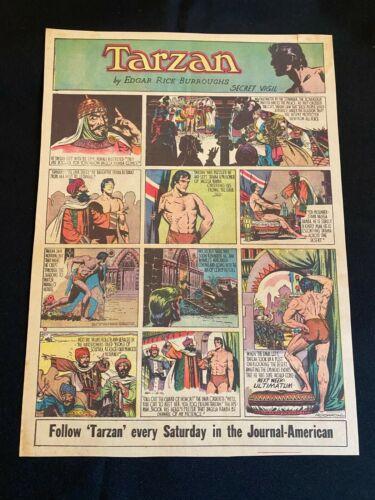 #49 TARZAN by Burne Hogarth Sunday Tabloid Full Page Strip January 18, 1942