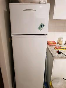 Fisher & Paykel fridge. Centennial Park Eastern Suburbs Preview