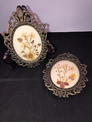 Vintage Dried Pressed Floral J. Kendall Art In Italian Metal Frames W/Glass (2)