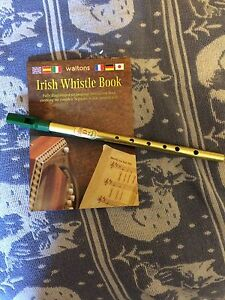 Irish Whistle in D with instruction book