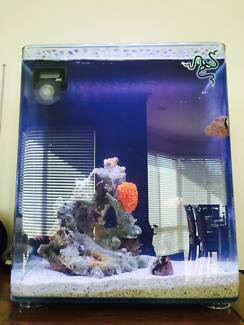 34L Marine nano tank Manning South Perth Area Preview